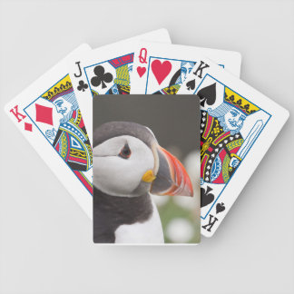 Puffin Profile Deck Of Cards