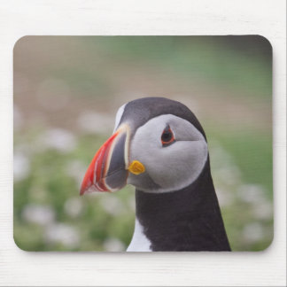 Puffin Side View Mouse Mat