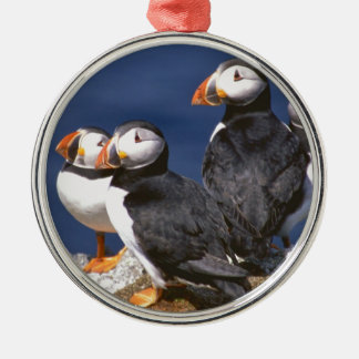 Puffin-tastic Christmas Ornament