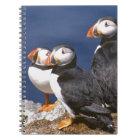 Puffin-tastic Notebook