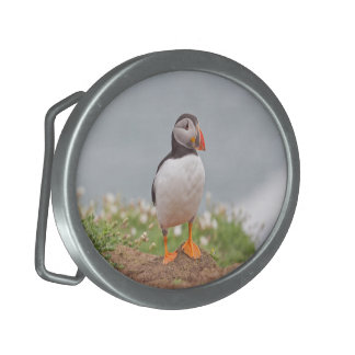 Puffins and Flowers Buckle Oval Belt Buckle