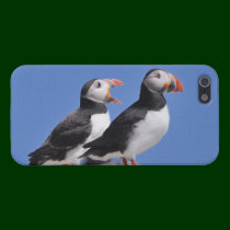 Puffins iPhone 5 Cover