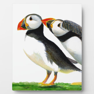 Puffins Seabirds in Watercolour Paints Artwork Display Plaques