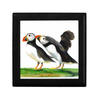 Puffins Seabirds in Watercolour Paints Artwork Gift Box