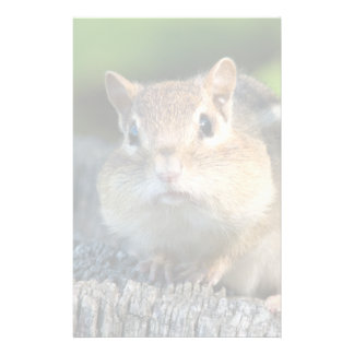 Puffy Cheeked Chipmunk Customised Stationery