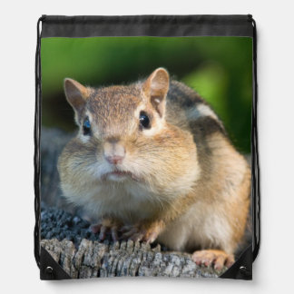 Puffy Cheeked Chipmunk Drawstring Bag