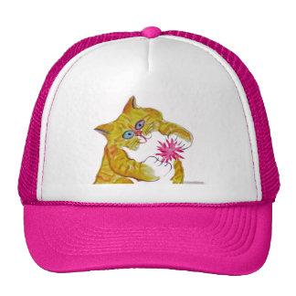 Puffy Play, Orange Tiger Kitten's Favorite Toy Cap