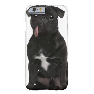 Pug (1 year old) sitting with its tongue hanging barely there iPhone 6 case
