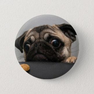 Pug 6 Cm Round Badge