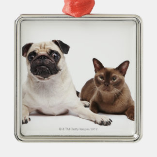 Pug and Burmese cat Christmas Ornament