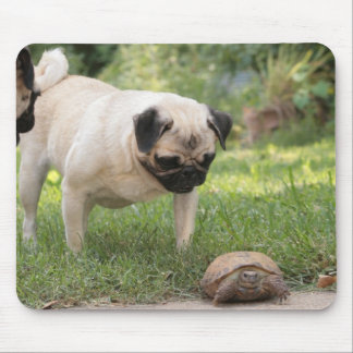 Pug and Turtle Meeting - Customize Mouse Pads