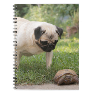Pug and Turtle Meeting - Customize Notebooks