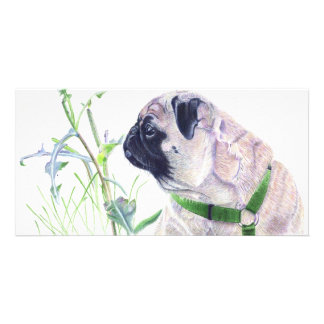 Pug Art Card Personalized Photo Card