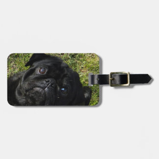 pug black luggage tag