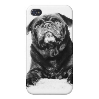 Pug - Black PUG Black & White iPhone 4/4S Cases