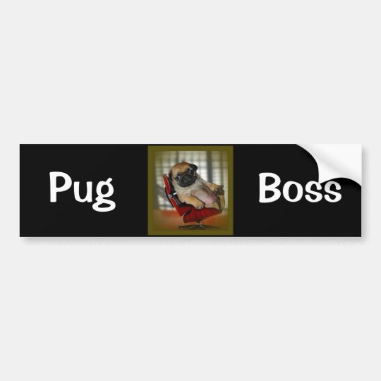 Pug Boss Bumper Sticker