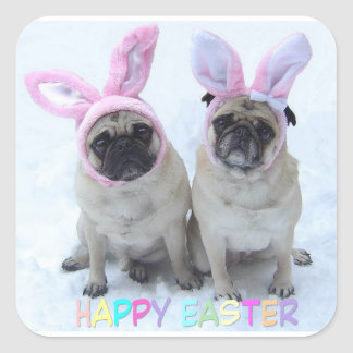 Pug bunny's square sticker