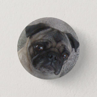 pug buttons