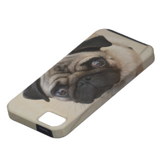 Pug Case For The iPhone 5