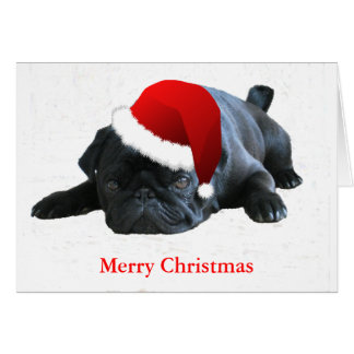 Pug Christmas Card