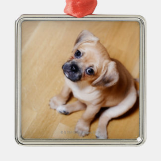 Pug Cross Cavalier King Charles Spaniel Christmas Ornament