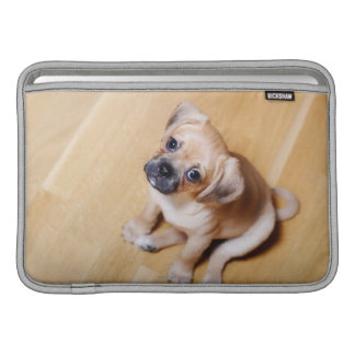 Pug Cross Cavalier King Charles Spaniel MacBook Air Sleeves