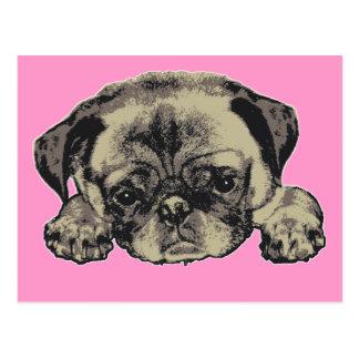 Pug cutie postcards
