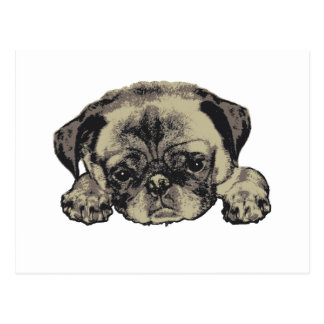 Pug cutie postcard