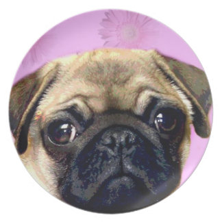 Pug decorative plate