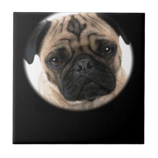 Pug Design Tile