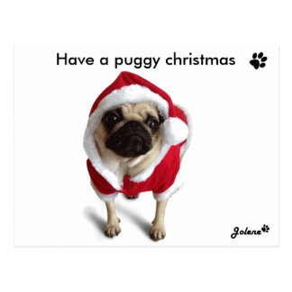 Pug dinghy one Christmas cards Postcard