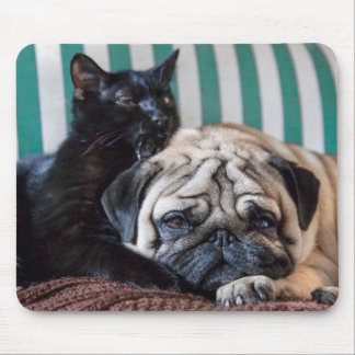 Pug Dog and Black Cat Sleeping Together Mouse Mat