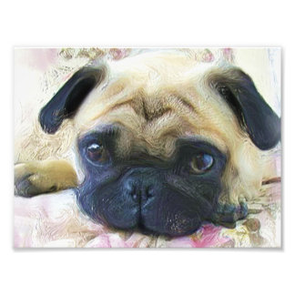 Pug dog art photo