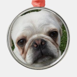 Pug dog christmas ornament