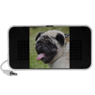 Pug dog cute photo portable doodle speakers