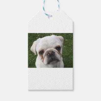 Pug dog gift tags