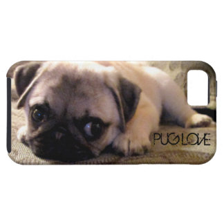 Pug Dog iPhone Case