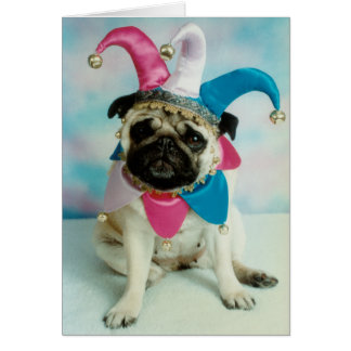 Pug Dog Jester Clown Card