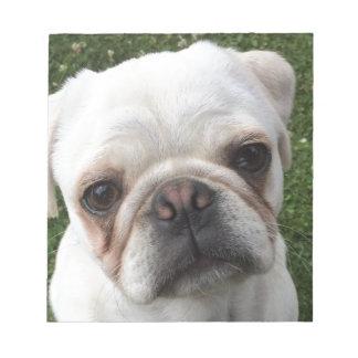 Pug dog notepads