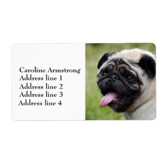 Pug dog personalized custom address labels, photo shipping label