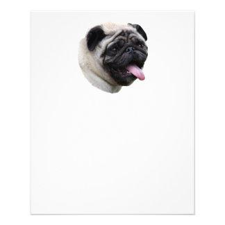 Pug dog photo portrait full color flyer