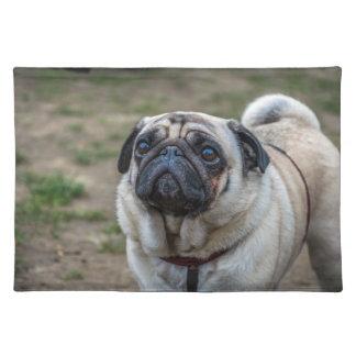 Pug dog placemat