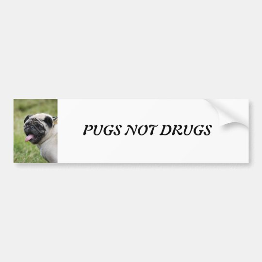 Pug dog, pugs not drugs cute photo bumper sticker
