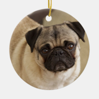 PUG DOG PUP ROUND CERAMIC DECORATION
