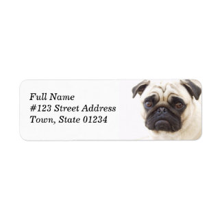 Pug Dog Return Address Mailing Label