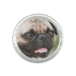 Pug Dog Ring