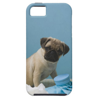Pug dog sitting on bed by hot water bottle and iPhone 5 case