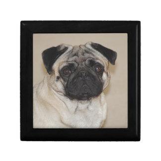 Pug Dog Small Square Gift Box