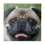 Pug Dog Small Square Tile