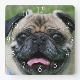 Pug dog square clock